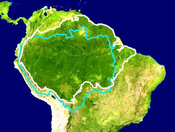 אגן האמזונאס