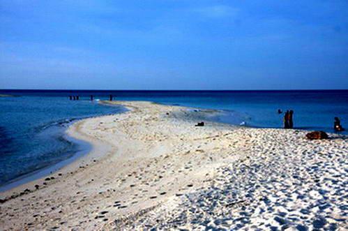 רצועת החול של האי הלבן