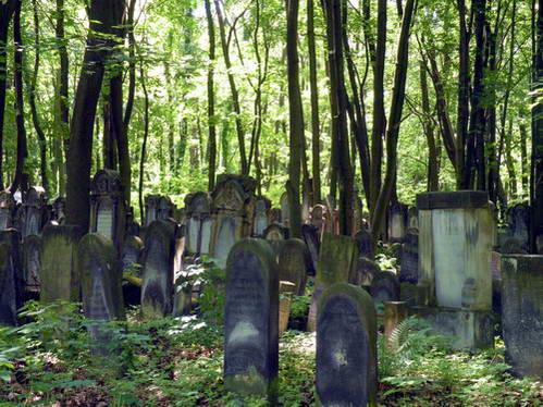 בית הקברות היהודי של ורשה