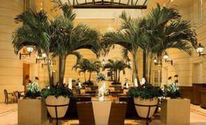 בית מלון מומלץ במרכז ורשה