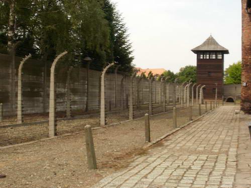 גדר המחנה