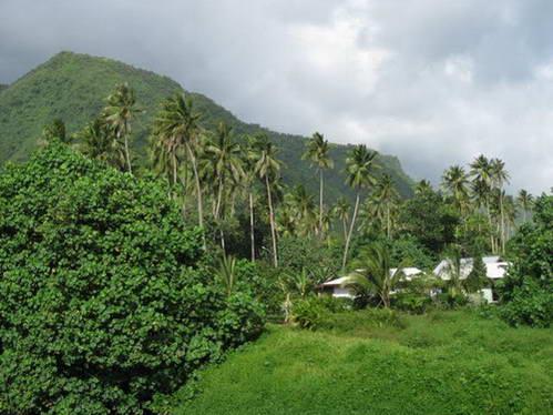 סביב האי הכל ירוק והררי