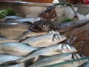 פורטו, מסעדת דגים Os Lusíadas