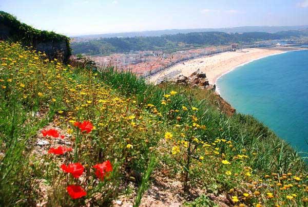 אזור החוף מרכז פורטוגל, נזרה
