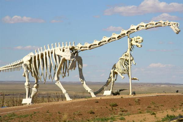דינוזאורים בסין