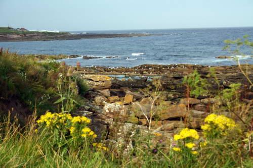 חופי הים הצפוני, קרייל, דרום סקוטלנד, בריטניה