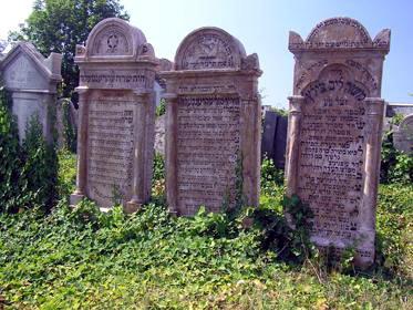 מצבות בבית הקברות היהודי של ניטרה