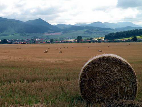 שדות וכפרים ציוריים למרגלות הרי הטטרה הגבוהים