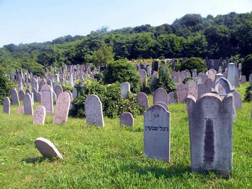 הקברים על צלע הגבעה שרק מיעוטם גלויים לעין