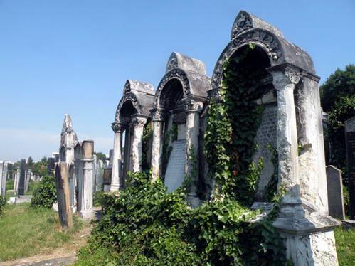 בית קברות יהודי בברטיסלבה, עדות אילמת לקהילה שכמעט ונכחדה