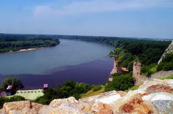 שפך מימי נהר מורבה העכורים אל מי הדנובה הכחולים