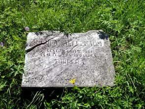 בית הקברות היהודי של ספישקה נובה ווס