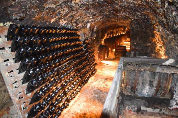 ייקב ומרתף יין באזור היין טוקאי, סלובקיה