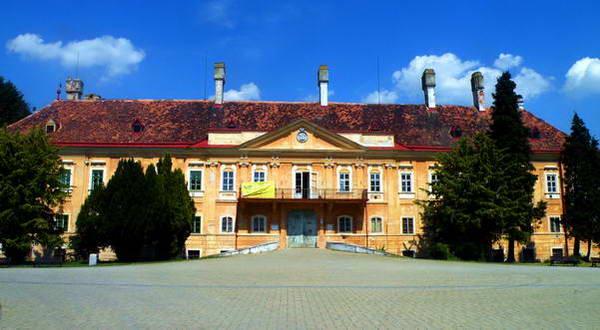 ארמון משפחת פאלפי במלצקי, עבודות השיפוץ בעיצומן