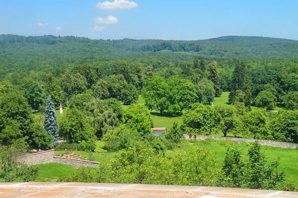 מבט מאחד ממגדלי הטירה על הגן והיער הטבעי