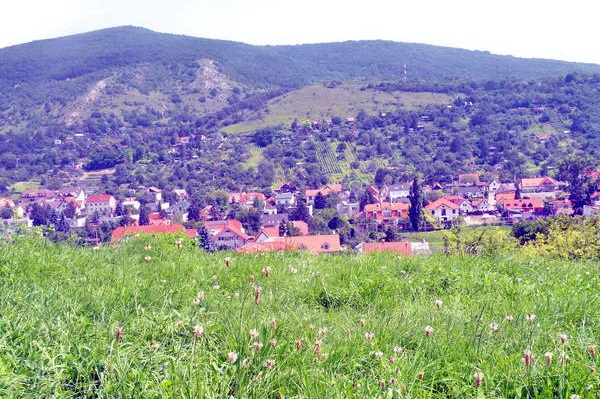 הקרפטים הקטנים - כפרים, עיירות וכרמי יין