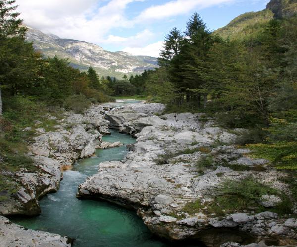 נהר סוצ'ה