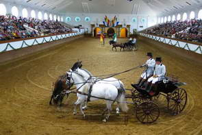 מופע רכיבה על סוסים, אנדלוסיה