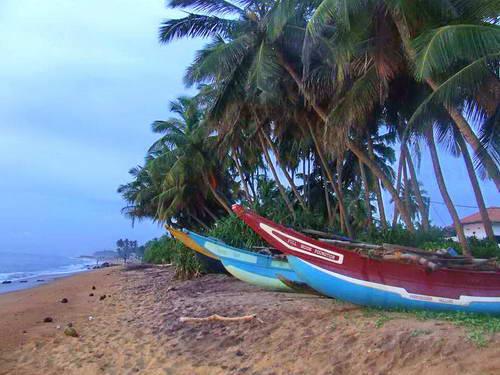 סרי לנקה, חופים לאחר הצונאמי