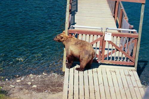 שמורת קטמאי, אלסקה