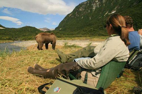 אלסקה, שמורת קטמאי, דובים