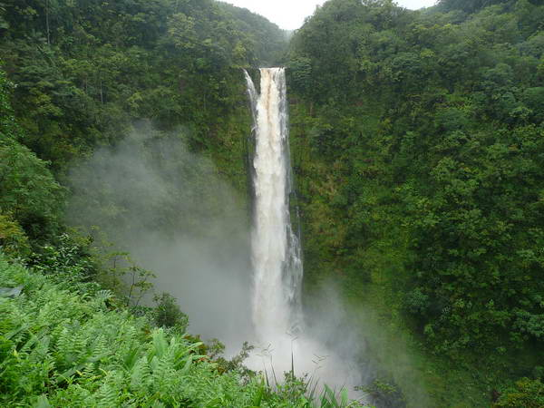 מפלי אקאקא (Akaka Falls S.P)