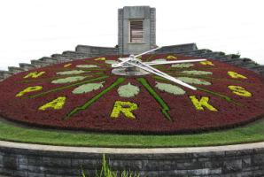 שעון הפרחים