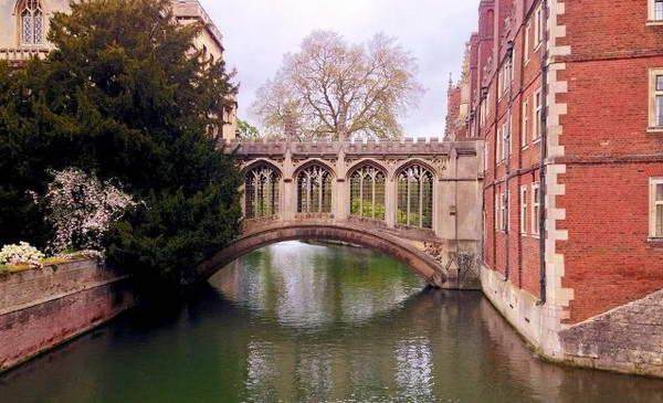 גשר האנחות קיימברידג', בריטניה