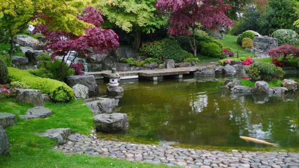 אי של הרמוניה. הגן היפני בפארק הולנד, לונדון