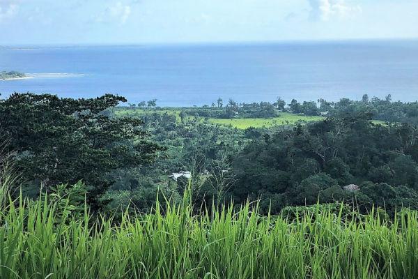 נוף טיפוסי באיי ונואטו