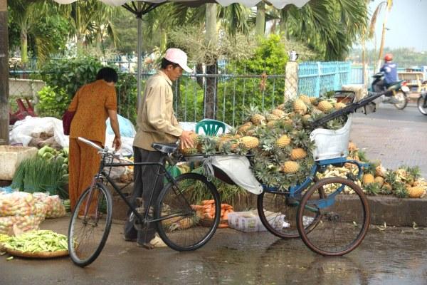 פירות טרופיים לצד הדרך, בויאטנם
