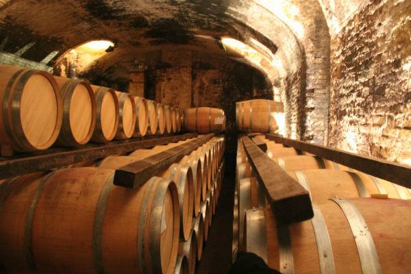 סיור יין בעולם