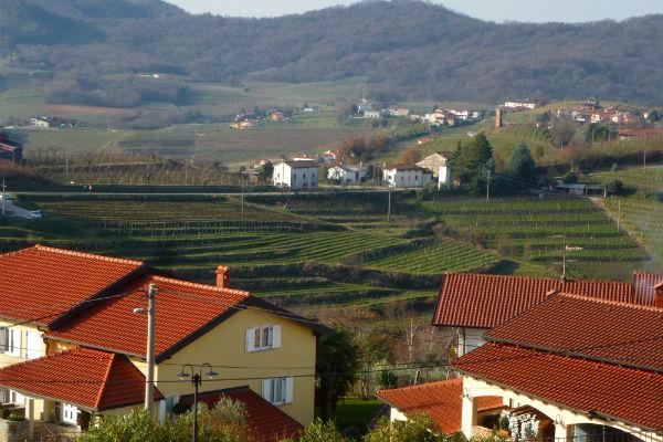 טיול יין בסלובניה