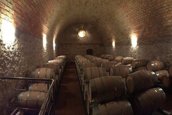 יין במדריד
