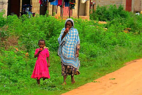 האי פונזי, קניה