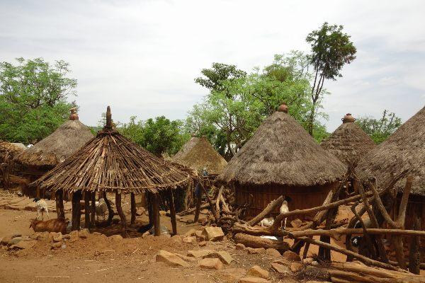בקתות עץ של שבט הקונסו