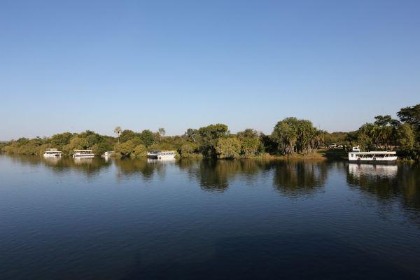זפארי בזמביה