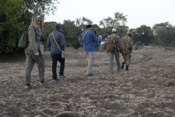 ספארי הליכה בזמביה