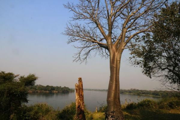 שיט על נהר הזמבזי