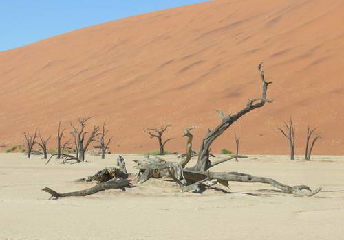 דיונות חול סוסוסוולי, נמיביה