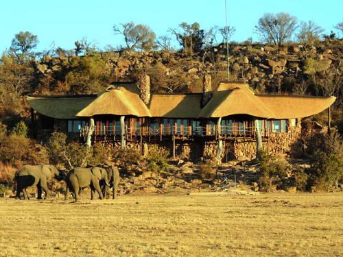 דרום אפריקה, טיול עם ילדים, שמורת טבע וולגבונדן