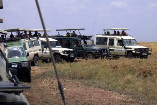 רכבי ספארי, ספארי קמפינג בטנזניה