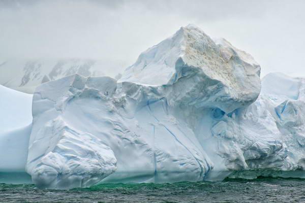 קרחונים באנטארקטיקה