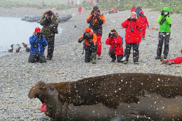 טיול באנטארקטיקה