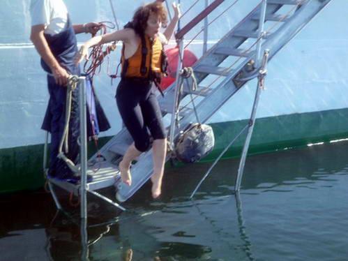 קפיצה למים הקפואים של הים הדרומי