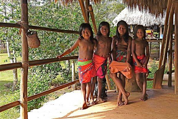 טיול לפנמה, שבטים