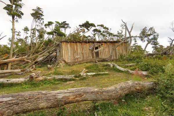 טרק השיניים של נברינו, אושוואיה, ארץ האש