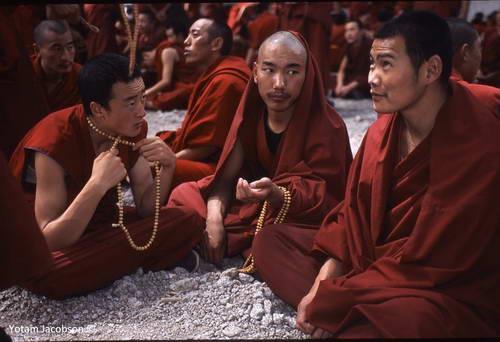 שיח נזירים, מנזר סרה, טיבט