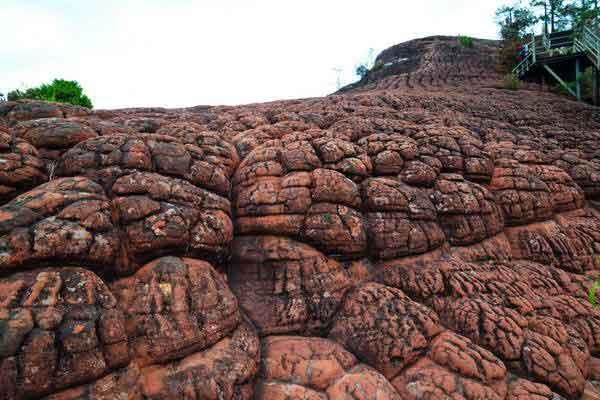 הר אלף הצבים, לימינג, שמורת לאוג'ון, חבל יונאן, דרום סין