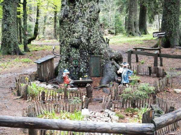 היער השחור, מסלול הגמדים